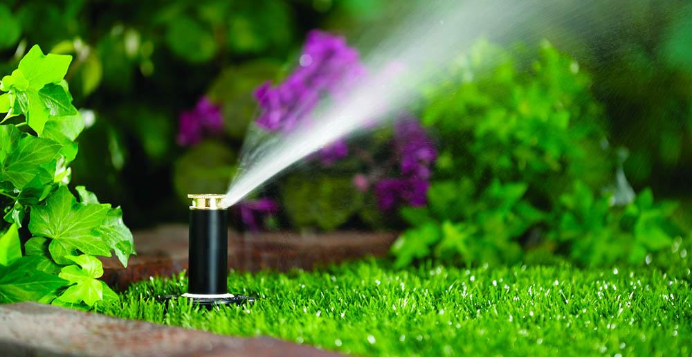 Giardinaggio e irrigazione for Irrigazione piante