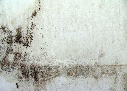 Macchie umidità muro